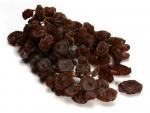 Fruits Dry Image